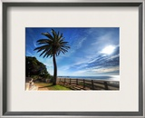 Santa Monica Boulevard Framed Photographic Print by Trey Ratcliff