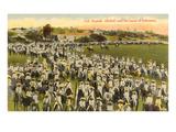 Zapatistas, Mexico, 1916 Posters
