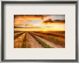 The Lonely Road to the Dinosaur Dig Framed Photographic Print by Trey Ratcliff