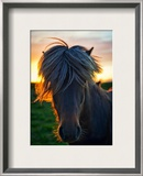 The Horse of Sagas Framed Photographic Print by Trey Ratcliff