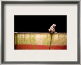 Across the Line Framed Photographic Print by Trey Ratcliff