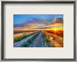 Long Road in Montana Framed Photographic Print by Trey Ratcliff