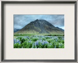 Flowers and Carved Stone Framed Photographic Print by Trey Ratcliff