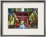 Red Gate After Rain Framed Photographic Print by Trey Ratcliff