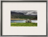 The Sheep and the Lonely House Framed Photographic Print by Trey Ratcliff
