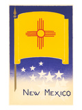 Flag of New Mexico Print
