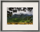 From the Forest, Across the Valley Framed Photographic Print by Trey Ratcliff