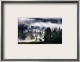 The Forest on the Mega Volcano Framed Photographic Print by Trey Ratcliff