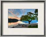 Tree at the Serene Lake Framed Photographic Print by Trey Ratcliff