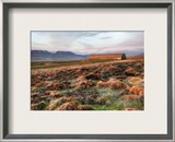 Red Fields on the Tundra Framed Photographic Print by Trey Ratcliff