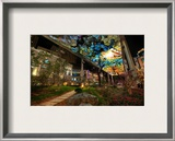 """The Place"" Framed Photographic Print by Trey Ratcliff"