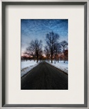 A Chilly Morning in Boston Common Framed Photographic Print by Trey Ratcliff