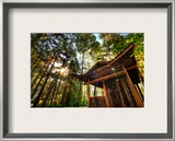 The Silent Temple of Zhangjiajie Framed Photographic Print by Trey Ratcliff
