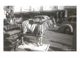 Tijuana Faux Zebra Posters