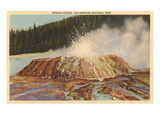Sponge Geyser, Yellowstone Park, Montana Print