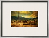 The Old Wild Stampede Framed Photographic Print by Trey Ratcliff