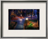 Central Park in the Fall Framed Photographic Print by Trey Ratcliff