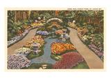 Forest Park, St. Louis, Missouri Poster