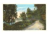 Central Park, Grand Forks, North Dakota Prints
