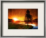 A view with my coffee Framed Photographic Print by Trey Ratcliff