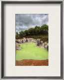 The Green Pool Framed Photographic Print by Trey Ratcliff