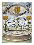 Flower Clock, 1643 Print