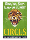 Circus Poster, 1940S Giclee Print