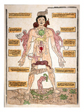 Bloodletting Chart, 1493 Giclee Print by Johannes De Ketham
