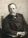 Louis Pasteur (1822-1895) Photographic Print by Gaspard Felix Tournachon Nadar