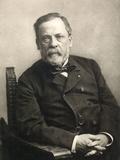 Louis Pasteur (1822-1895) Photographic Print by Gaspard Felix Tournachon Nadar