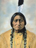 Sitting Bull (1834-1890) Photographic Print by D. F. Barry