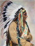 Sitting Bull (1834-1890) Photographic Print