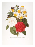 Redoute: Bouquet, 1833 Giclee Print by Pierre-Joseph Redouté