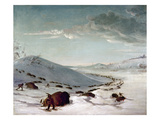 Buffalo Chase In Winter Posters by George Catlin