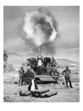 Korean War: Artillery Prints