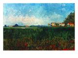 Van Gogh: Landscape, 1888 Prints by Vincent van Gogh