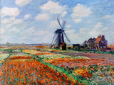 Monet: Tulip Fields, 1886 Premium Giclee Print by Claude Monet