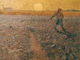 Van Gogh: Sower, 1888 Print by Vincent van Gogh