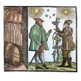 Wine Merchant, 1582 Prints