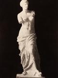 Venus De Milo Photographic Print