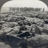 World War I: Russian Dead Photographic Print
