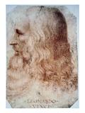Leonardo Da Vinci Posters by  Leonardo da Vinci