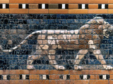 Babylon: Lion Photographic Print