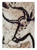 Cave Art: Lascaux Giclee Print