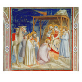 Giotto: Adoration Giclee Print by Giotto di Bondone