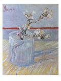 Van Gogh: Branch, 1888 Giclee Print by Vincent van Gogh