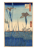 Japan: Iris Garden, 1857 Giclee Print by Ando Hiroshige