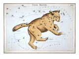 Astronomy: Ursa Major Premium Giclee Print by Sidney Hall