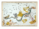 Constellation: Hydra Premium Giclee Print by Sidney Hall