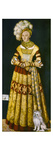 Katharina Von Mecklenburg Giclee Print by Lucas Cranach the Elder